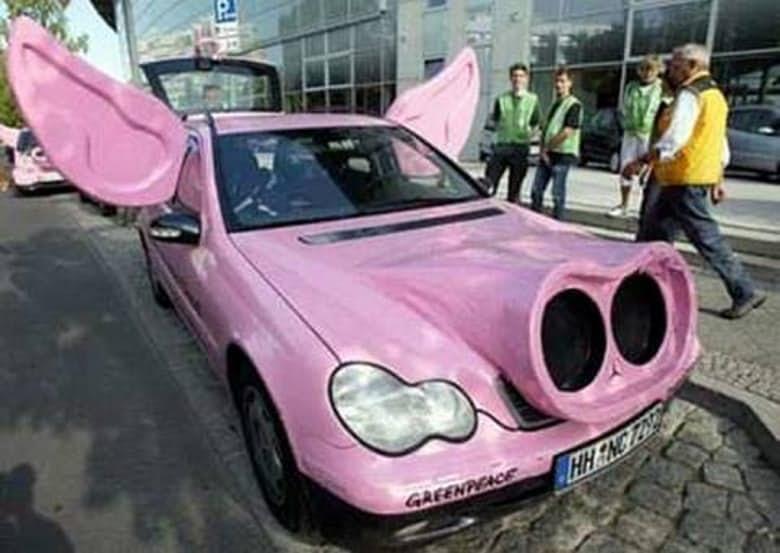 14-pig-car