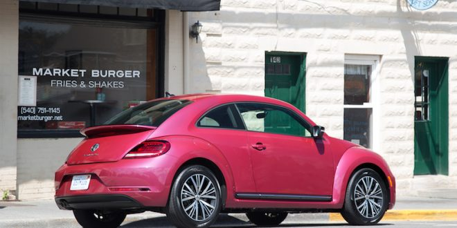2017-pink-beetle