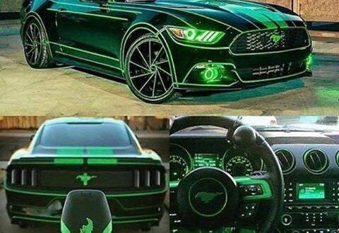 Todo verde